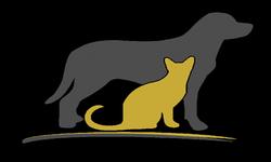Кошки и собаки на понятном языке для человека на Doktor-Vet.ру